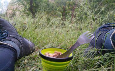De dappere vlo die zijn ontbijt durft te eten op de lip van een leeuw