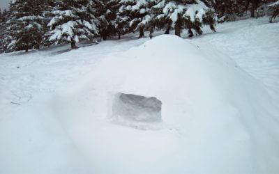 Winterkamperen: Sneeuw veel en lang, maakt de klaver niet bang